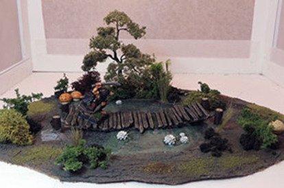 Swamp terrain